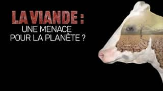La viande : une menace pour la planète ? en streaming
