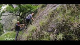 À l'état sauvage : Mike Horn fait passer un test à Adriana Karembeu