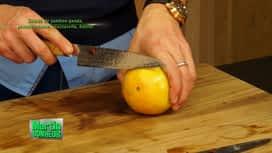 Martin Bonheur : Salade jambon Ganda, pamplemousse, mozzarella, basilic