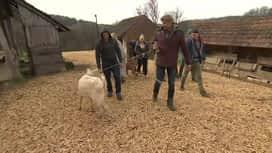 Farm : Farm 11. rész