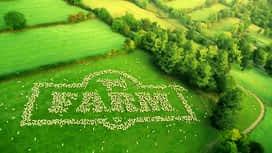 Farm : Farm 49. rész