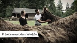 Véto & Co : Emission 2