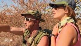 Wild, la course de survie : Les binômes se lancent dans la 1ère course au cœur de la savane du Botswana
