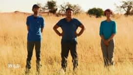 Wild, la course de survie : Les nouveaux binômes qui affrontent la jungle bolivienne sont ...