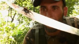 Wild, la course de survie : La semaine prochaine dans Wild: la jungle amazonienne!