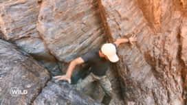 Wild, la course de survie : La chute spectaculaire d'Adrien !