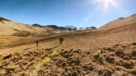 Wild, la course de survie : La semaine prochaine dans Wild: la finale dans la cordillère des Andes