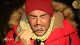 Wild, la course de survie : Emmanuel mange son premier lézard
