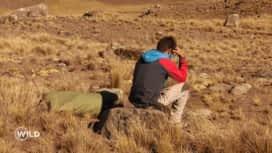 Wild, la course de survie : Rémi souffre du mal des montagnes