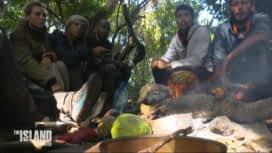The Island : Débat houleux sur la chasse au caïman !