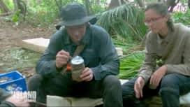 The Island : Les célébrités mangent de la pâtée pour chien !