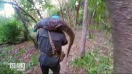 The Island : Gwendal capture un caïman !