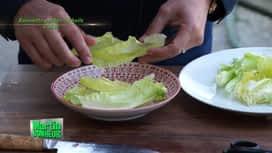Martin Bonheur : Roussette pochée à l'huile d'olive et aromates