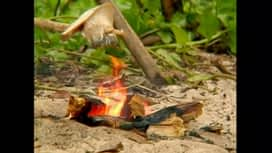 Survivor : Survivor - A sziget 2. évad 5. rész