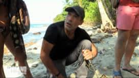 The Island : Mike Horn donne une dernière mission aux célébrités