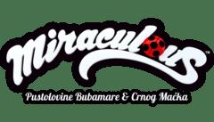 Gledaj Miraculous: Pustolovine Bubamare i Crnog Mačka ponovno