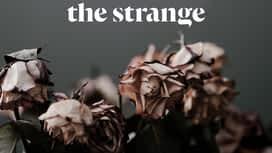The Strange en replay