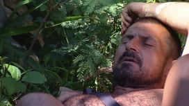 Survivor : Ismét nézeteltérés alakult ki a Buwayán belül
