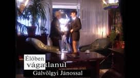 Gálvölgyi-show : Gálvölgyi Show 9. rész