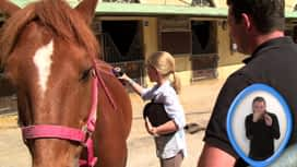 Kid et toi : À la découverte de l'équitation