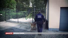 Enquêtes : Ep 43 : brigade canine & contrôle routier