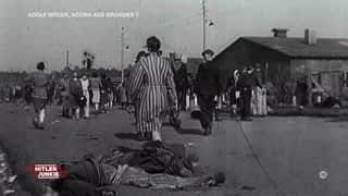 Hitler & Nazis Junkies : Hitler Junkie - Adolf Hitler, accro aux drogues ?
