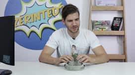 Szerinted? : Youtuberek vs. Külföldi videók