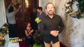Mission : Végétal : Trouver Noël à sa porte