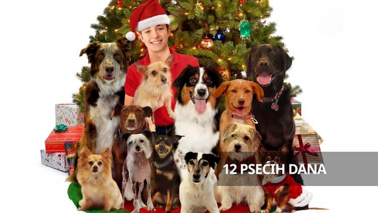12 psećih dana