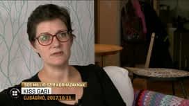 Híradó : RTLII Híradó 2019-01-23