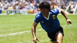 The Immortals : Diego Maradona, George Best, Eusébio