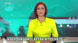 Híradó : RTL Híradó 2019-02-11