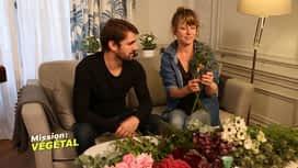 Mission : Végétal : A fleur de pot