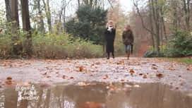 La grande balade : La grande balade bruxelloise: Parc de Wolvendael