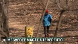 Híradó : RTL Híradó 2019-02-27