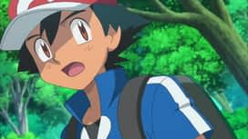 Pokemon : 04-Une amitié électrisante !
