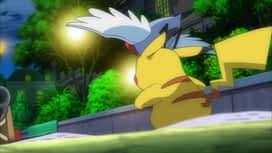 Pokemon : 06-Un combat glissant !
