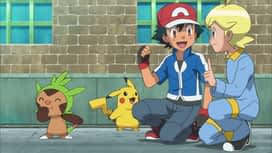 Pokemon : 10-Méga-Méga-Miaouss en folie !