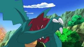 Pokémon : La voie du maître dragon !