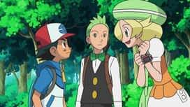Pokémon : Chinchidou, le roi de la propreté !