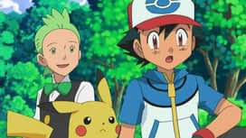 Pokémon : Coupenotte fait de son mieux !
