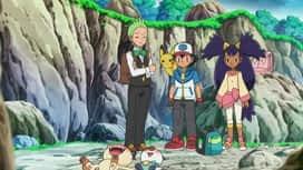 Pokémon : Chacripan, tendre ou sournois ?