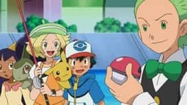Pokémon : Un connaisseur pêcheur tend ses filets !