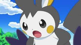 Pokémon : Le spectacle des Maracachi !