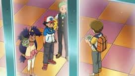 Pokémon : Les quatre saisons de Haydaim !