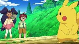Pokémon : Combat contre un petit tyran !