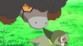 Pokémon : Sur le territoire des Frison !