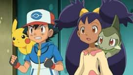 Pokémon : Rachid prend son envol !