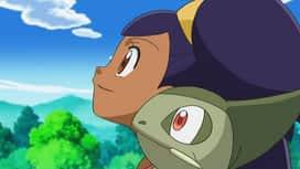 Pokémon : Lutte pour la restauration ! (2ème partie)