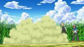 Pokémon : L'équipe terre-ciel des combats en double !